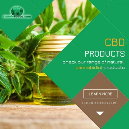 600x600_cbd_products_en