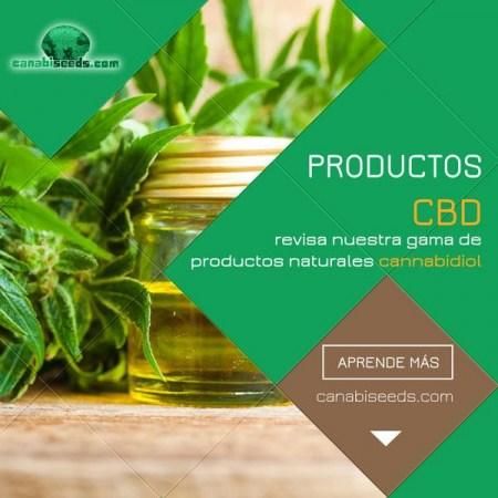 600x600_cbd_products_es