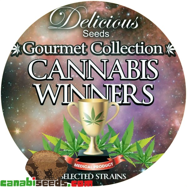 Gourmet Collection - Cannabis Winner Strains 1#
